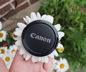 canon, flowers, and tumblr image