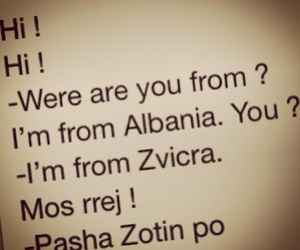 albanian, funny, and lol image
