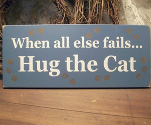 cat, hug, and quotes image