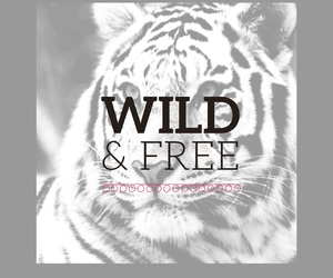 free, quotes, and wild image