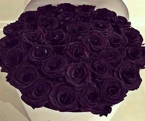 purple, roses, and luxury image