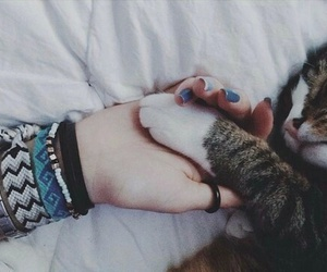 cat, pets, and girl image