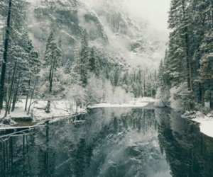 nature, cold, and snow image