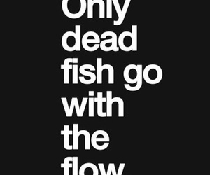 fish, flow, and quote image