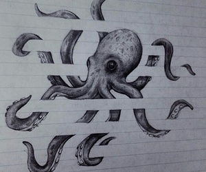 animal, art, and octopus image