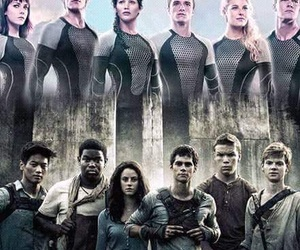 the hunger games and the maze runner image
