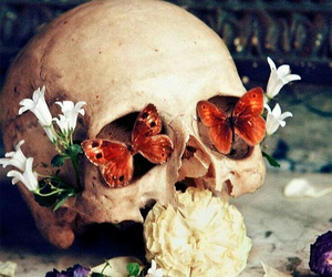 butterflies, skull, and butterly image