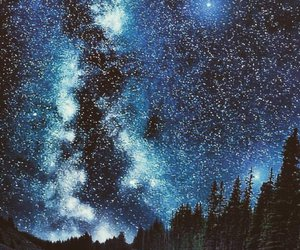 forest, galaxy, and night image