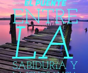 frases, vida, and frases image