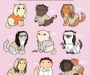 orange is the new black, cat, and oitnb image