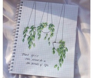 plants, art, and aesthetic image