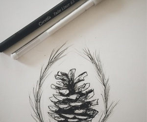 drawing, pinecone, and Tattoos image