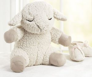 baby, lamb, and nursery image