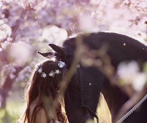 horse, girl, and flowers image