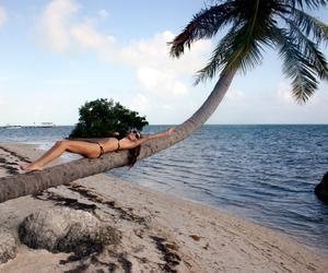 beach, palm, and bikini image