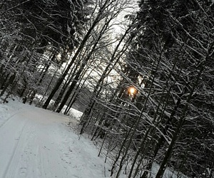 winter, path, and snow image