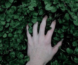 green, hand, and plants image