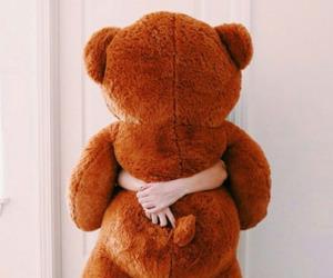 bear, beautiful, and girl image
