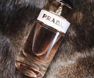 Prada and perfume image