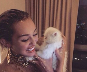 miley cyrus, cat, and mileycyrus image
