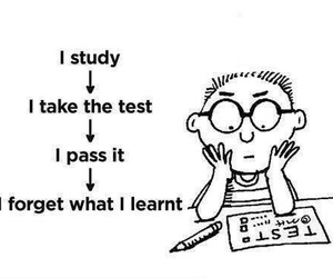 study, funny, and test image