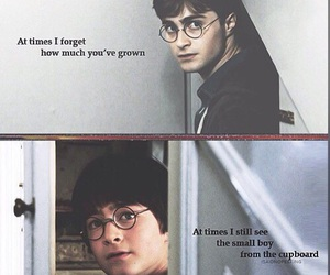 harry potter, book, and daniel radcliffe image