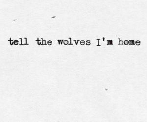 wolf, quotes, and home image