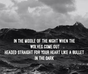 wolves, one direction, and made in the am image
