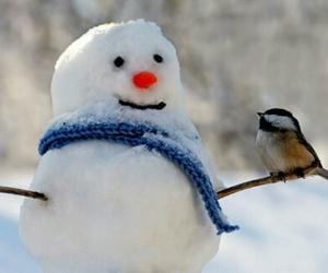 bird, snow, and snowman image