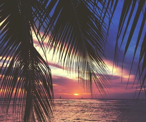 summer, ocean, and sunset image