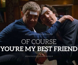 drunk, friendship, and Martin Freeman image