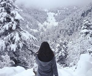 forest, girl, and image image