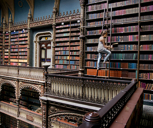 book, books, and fav image