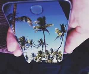 iphone, beach, and palm trees image