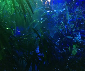 blue, glow, and green image