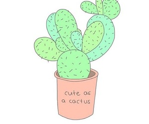 cactus, overlay, and cute image