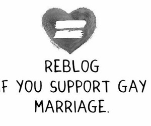 gay, gay marriage, and support image