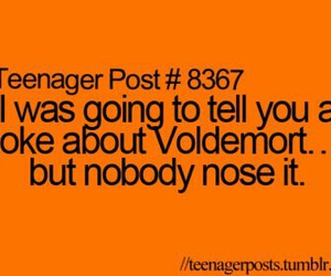 funny and vildemort image