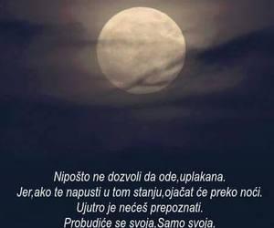 quote, citat, and ljubav image