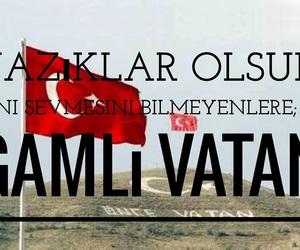 turkiye and vatan image