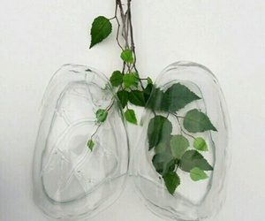 green, plants, and lungs image