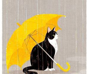cat, rain, and umbrella image
