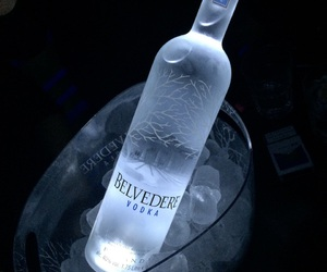 drink, alcohol, and belvedere image