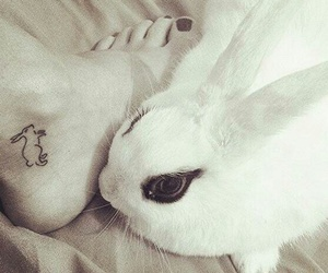 rabbit, tattoo, and cute image