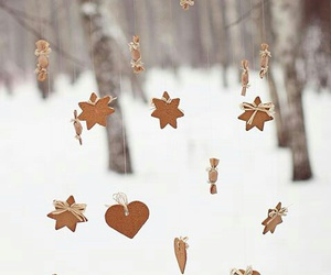 food, forest, and snow image
