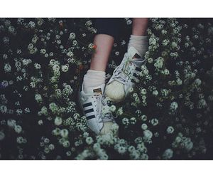 adidas, cool, and flower image