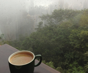 coffee, rain, and nature image