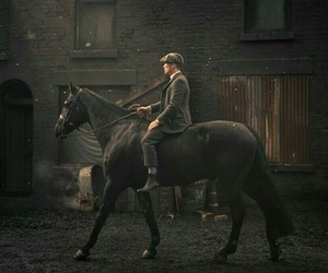 horse, Shelby, and peaky blinders image