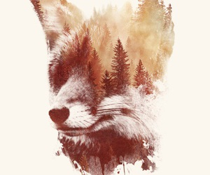 fox, forest, and tree image