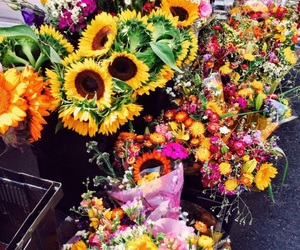 flowers, bright, and tropical image